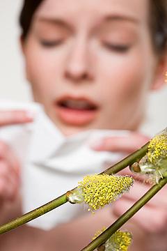 летняя аллергия симптомы и лечение
