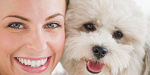 собака, щенок, девушка