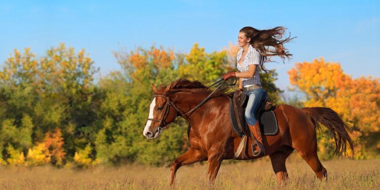 Верховая езда на лошади: уроки начинающим