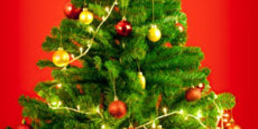 Как украсить елку к Новому 2013 году - идеи
