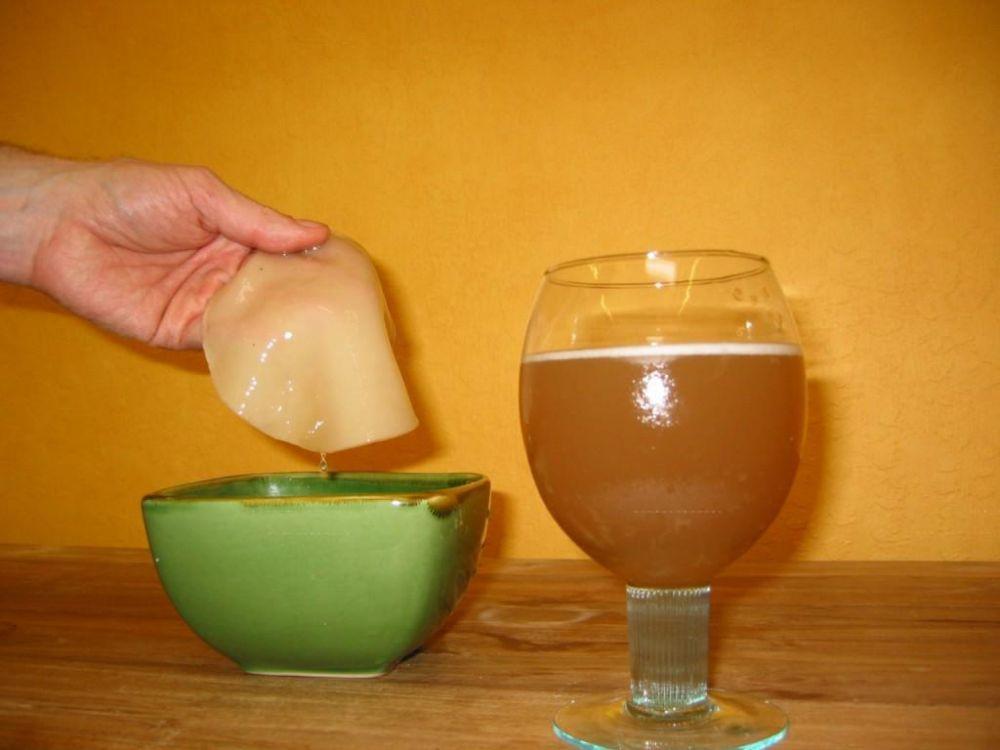 Можно ли беременным употреблять чайный гриб