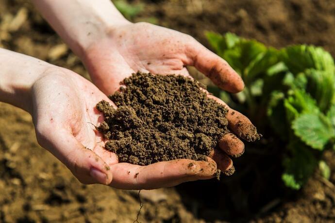 почва в руках человека