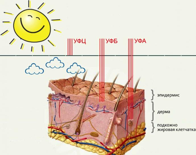 защита кожи от воздействия ультрафиолетовых излучений